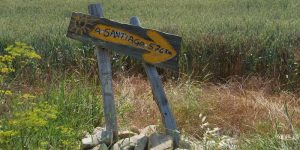How long is the Camino