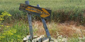 yellow-arrow-markings-camino-de-santiago-routes-caminoways