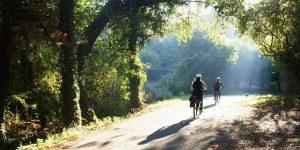 Camino Blog & Tips