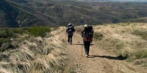 easy-camino-tour-walking-caminoways