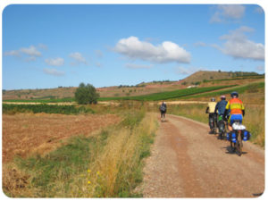 bike-cycling-caminoways