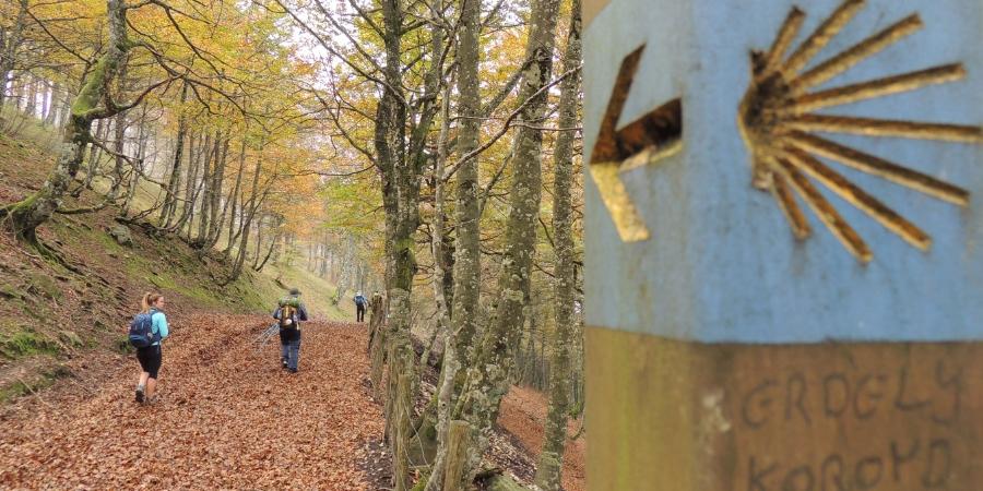 follow-the-yellow-arrow-rituals-and-traditions-camino-de-santiago-caminoways