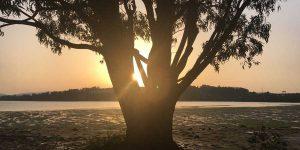 dario-camino-stories-memory-sunset-caminoways