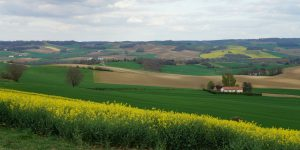 french-landscapes-le-puy-way-caminoways