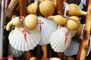 camino-de-santiago-scallop-shells-caminoways