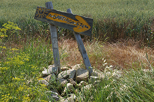 camino-de-santiago-yellow-arrow-sign-caminoways