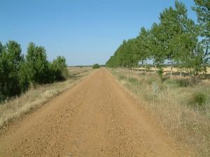 camino-frances-4-day6-300x225