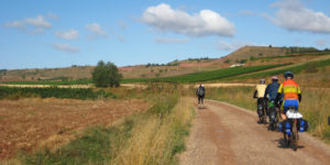 camino-frances-bike-caminoways