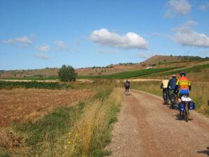 camino-frances-bike-caminoways