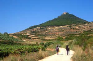 camino-training-tips-caminoways