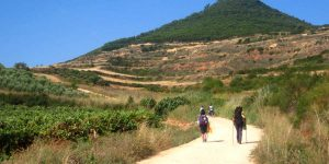 caminoways-solo-guided-tour-french-way