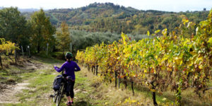 cycling-vineyards-tuscany-via-francigena-ways