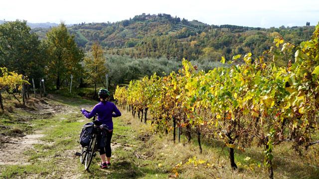 cycling-vineyards-tuscany-via-francigena-ways