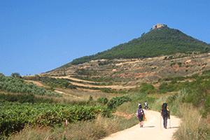 cycling-walking-the-camino-de-santiago-caminoways