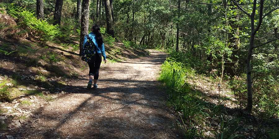 portuguese-coastal-camino-walking-alone-camino-ways