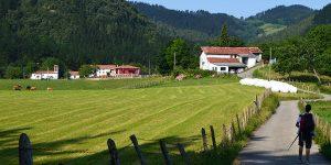 walker-camino-del-norte-countryside-walk-the-camino-de-santiago-caminoways