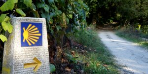 6 things you must know about the Camino