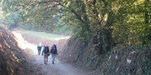 camino-daypack-caminoways-walkers