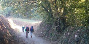 camino-daypack-caminoways-walkers