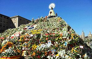 flowers-zaragoza-festival-camino-de-santiago-caminoways