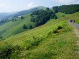 french-way-caminoways.com-pyrenees