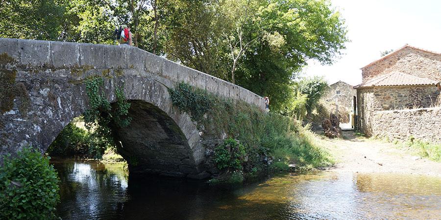 Camino Culture & General Information