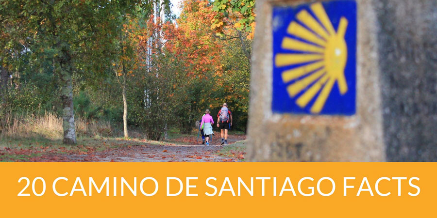 camino facts