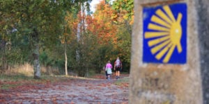 Autumn-Camino-guided-tours-caminoways