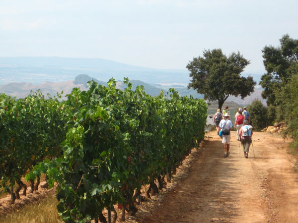 La-Rioja-pilgrims-french-way-camino-de-santiago-caminoways