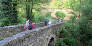 bridge-camino-frances-camino-de-santiago-galicia-caminoways-638x359