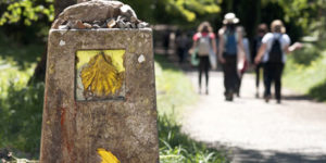 5 unmissable Camino routes