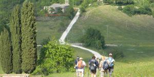 feature-Pieve-di-Coccorano-st-francis-way-caminoways
