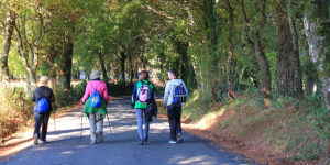 groups-walking-the-camino-with-friends-camino-frances