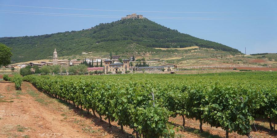 Logrono-la-rioja-wine-region-northern-spain
