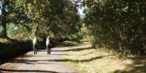 pilgrims-camino-de-santiago-camino-frances-caminoways-banner