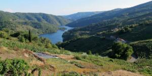ribeira-sacra-river-camino-de-invierno-caminoways