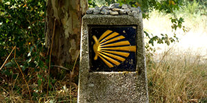 scallop-shell-camino-frances-holy-year-caminoways