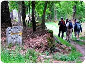 the-camino-plata-ourense