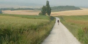 the-way-camino-article-caminoways