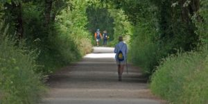 walking-memories-on-the-camino-christmas-competition
