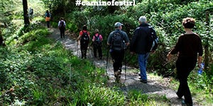 walks-caminoways-walking-festival