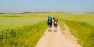 win-a-cicerone-guidebooks-and-vouchers-Camino-de-santiago