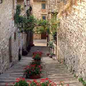 gubbio-flowers-saint-francis-way-via-francigena