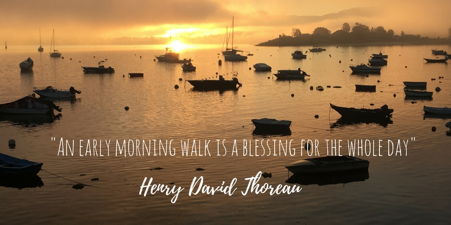 inspirational-quotes-henry-david-thoreau-walking-walk-caminoways