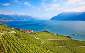 lake-geneva-lavaux-vineyards-francigena-ways
