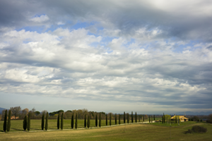 landscapes-Via-Francigena-Gavin-Gough-francigena-ways