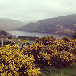 lough-dan-wicklow-preparation-walk-caminoways