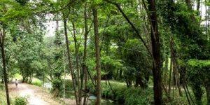 louro-valley-caminoways