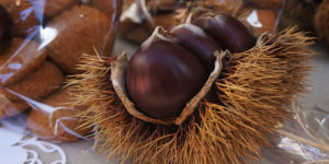 o-magosto-chestnut-camino-de-santiago-culture-caminoways
