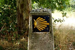 scallop-shell-camino-frances-holy-year-caminoways